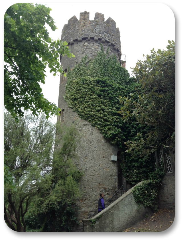 Picture of Ireland - Staircase Outside Malehide Castle.