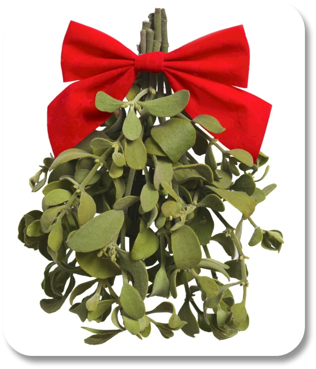 Irish Christmas Traditions - Mistletoe