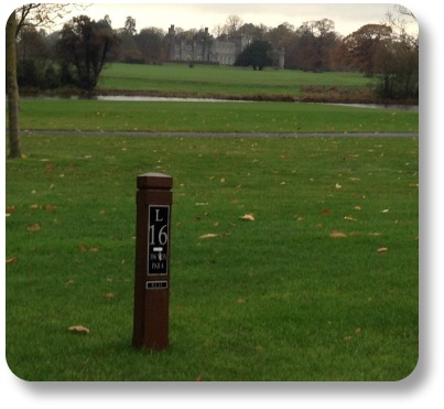 Irish Golf Jokes - View from 16th fairway at Carton House.