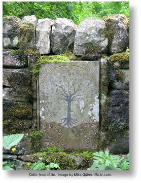 Celtic Tree of Life.  Image by Mike Quinn.  Flickr.com.
